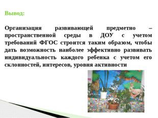 Вывод: Организация развивающей предметно – пространственной среды в ДОУ с уче