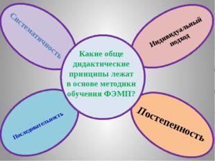 Какие обще дидактические принципы лежат в основе методики обучения ФЭМП? Сис