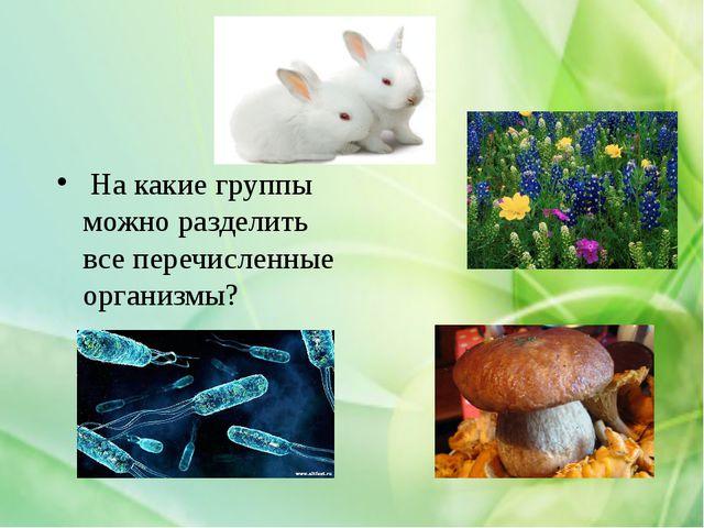 На какие группы можно разделить все перечисленные организмы?