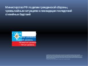 Министерство РФ по делам гражданской обороны, чрезвычайным ситуациям и ликвид
