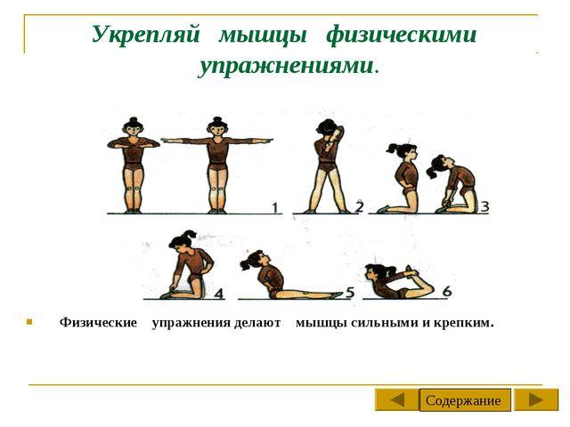Укрепляй мышцы физическими упражнениями. Физические упражнения делают мышцы с...