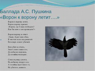 Баллада А.С. Пушкина «Ворон к ворону летит….» . Ворон к ворону летит, Ворон в