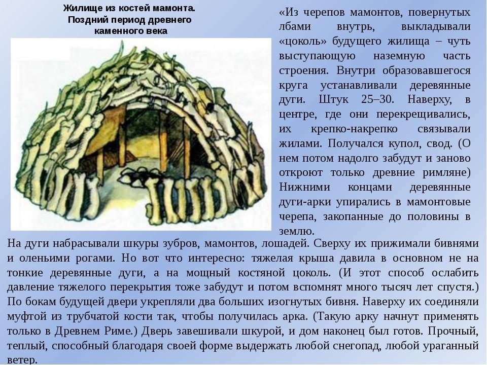 Жилище из костей мамонта. Поздний период древнего каменного века «Из черепов...
