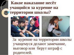 Какое наказание несёт учащийся за курение на территории школы? За курение на