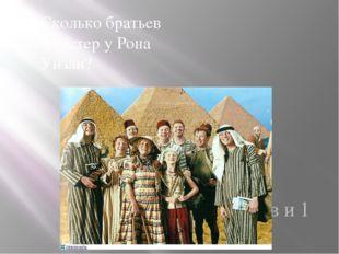 Сколько братьев и сестер у Рона Уизли? 5 братьев и 1 сестра