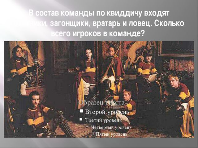 В состав команды по квиддичу входят охотники, загонщики, вратарь и ловец. Ско...