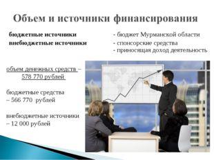 бюджетные источники - бюджет Мурманской области внебюджетные источники -
