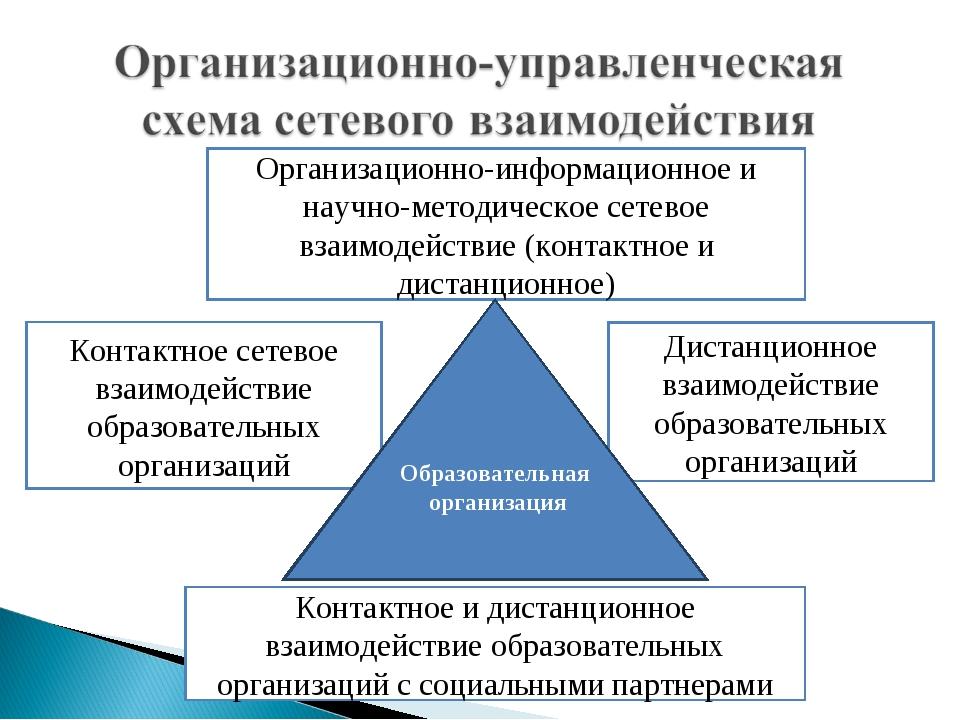Организационно-информационное и научно-методическое сетевое взаимодействие (к...