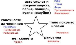 http://s019.radikal.ru/i639/1203/f4/7755e3c15e16.jpg