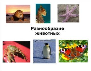 http://s017.radikal.ru/i413/1203/a2/d71b5ac38303.jpg