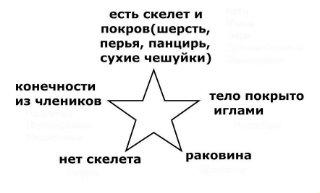 http://s019.radikal.ru/i619/1203/7e/ac7ef9fefe1d.jpg