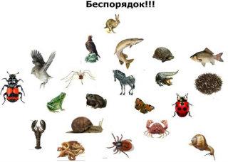http://s019.radikal.ru/i605/1203/99/b13757743611.jpg