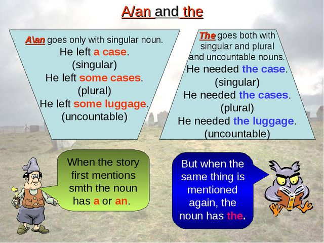 A/an and the A\an goes only with singular noun. He left a case. (singular) He...
