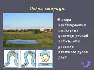 Озёра-старицы В озера превращаются отдельные участки речной поймы, это участк