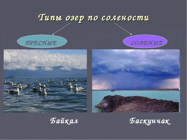 Типы озер по солености Байкал Баскунчак ПРЕСНЫЕ СОЛЕНЫЕ