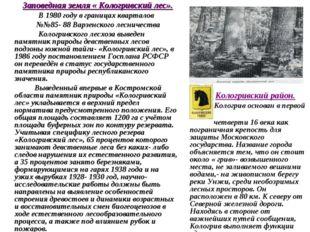 Кологривский район. Кологрив основан в первой четверти 16 века как пограничн