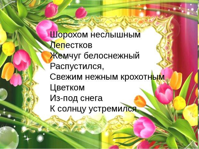 Шорохом неслышным Лепестков Жемчуг белоснежный Распустился, Свежим нежным кро...
