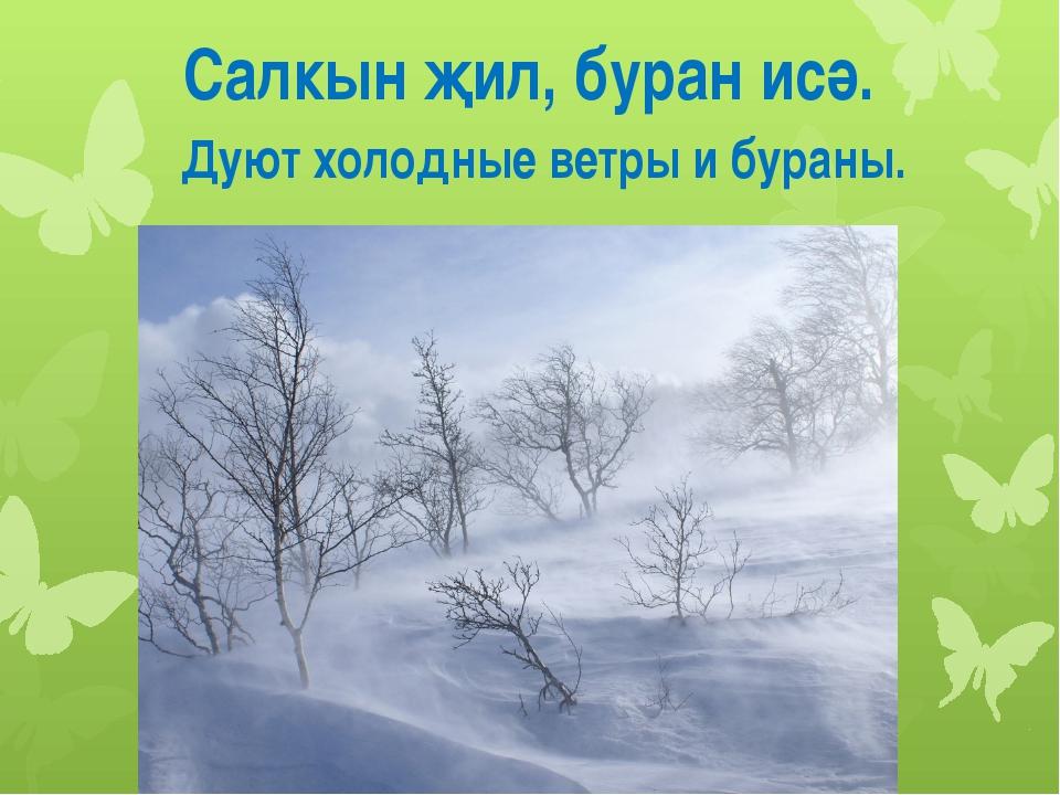 Салкын җил, буран исә. Дуют холодные ветры и бураны.