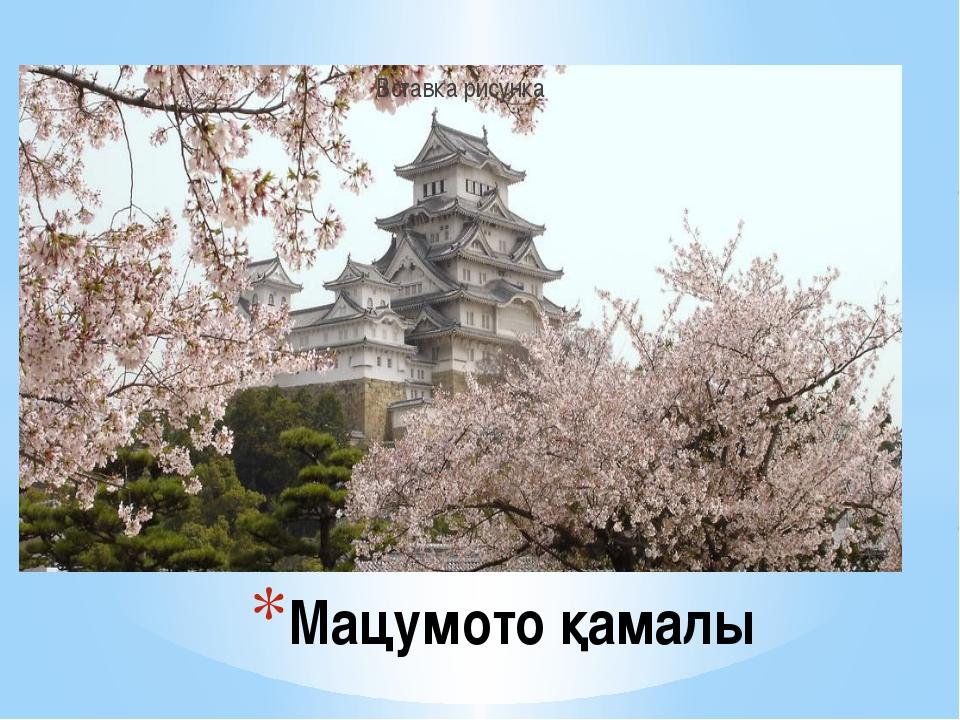 Мацумото қамалы