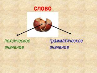 слово лексическое значение грамматическое значение