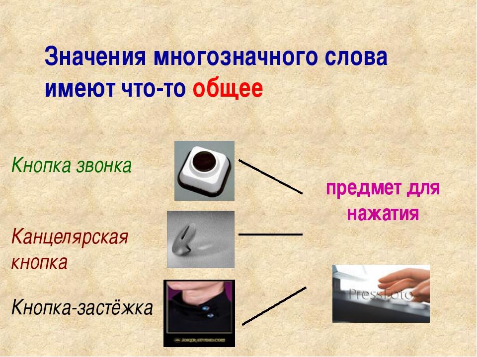 Значения многозначного слова имеют что-то общее Кнопка звонка Канцелярская кн...