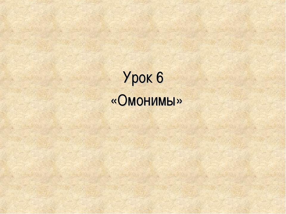 Урок 6 «Омонимы»