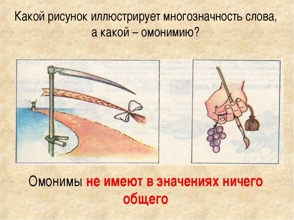 имитация иллюстрации к омонимам почитаются трехцветные