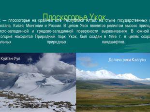 Плоскогорье Укок Уко́к — плоскогорье на крайнем юге Республики Алтай, на стык
