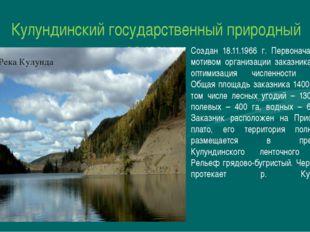 Кулундинский государственный природный заказник Создан 18.11.1966 г. Первонач