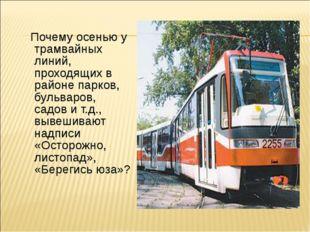 Почему осенью у трамвайных линий, проходящих в районе парков, бульваров, сад
