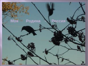 Моя Родина - Россия