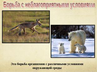 Это борьба организмов с различными условиями окружающей среды