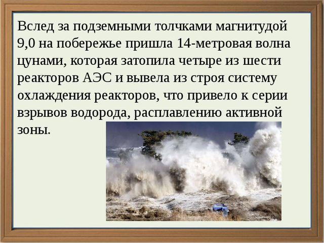 Вслед за подземными толчками магнитудой 9,0 на побережье пришла 14-метровая...