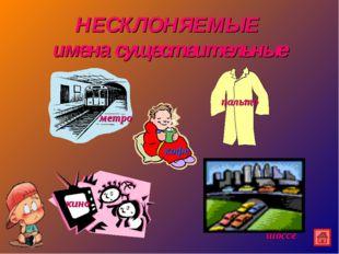 НЕСКЛОНЯЕМЫЕ имена существительные метро кофе пальто кино шоссе