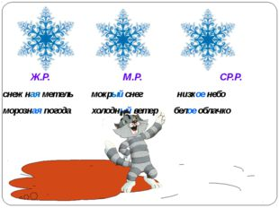 Ж.Р. М.Р. СР.Р. снежная метель мокрый снег низкое небо морозная погода холод