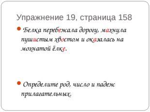 Упражнение 19, страница 158 Белка перебежала дорогу, махнула пушистым хвостом