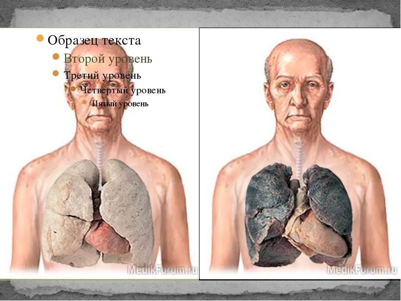 Лёгкие заядлого курильщика вмещают стакан никот