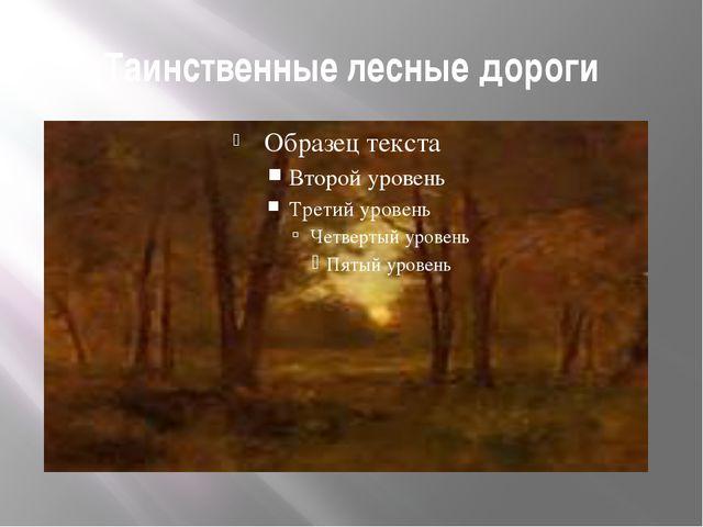 Таинственные лесные дороги