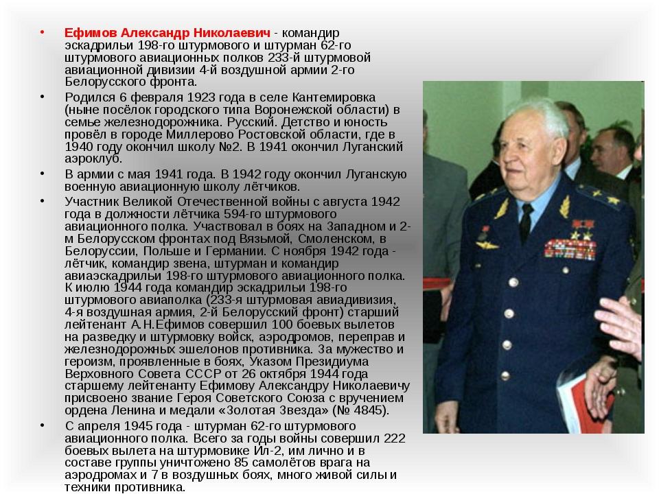 Ефимов Александр Николаевич - командир эскадрильи 198-го штурмового и штурман...