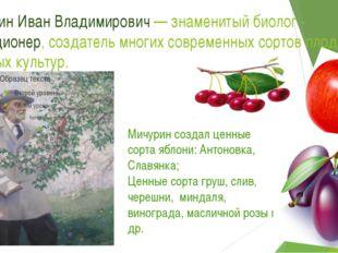 Мичурин Иван Владимирович — знаменитый биолог - селекционер, создатель многих