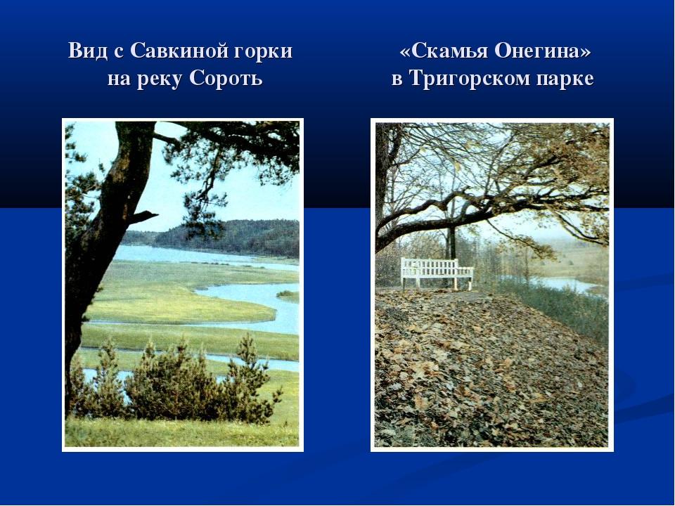 Вид с Савкиной горки «Скамья Онегина» на реку Сороть в Тригорском парке