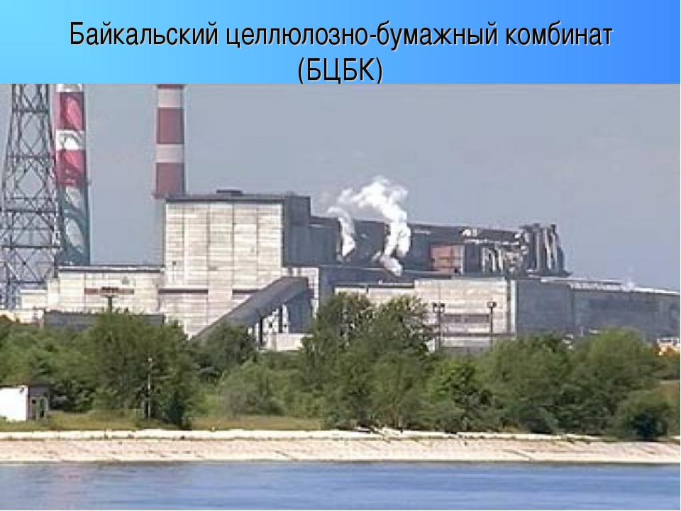 Байкальский целлюлозно-бумажный комбинат (БЦБК)