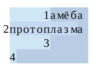 2 1 а м ё б а  п р о т о п л а з м а  3  4
