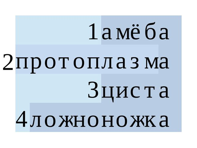 2 1 а м ё б а  п р о т о п л а з м а  3 ц и с т а  4 л о ж н о н о ж к а