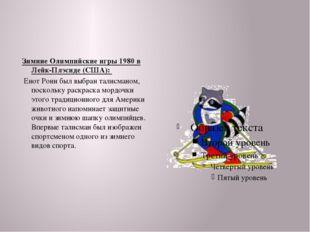 Зимние Олимпийские игры 1980 в Лейк-Плэсиде (США): Енот Рони был выбран тали