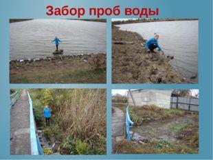 Забор проб воды