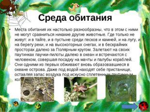 Среда обитания Места обитания их настолько разнообразны, что в этом с ними не