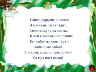 Нашел укрытие в цветке И в восемь глаз глядит, Заметив муху на листке, К ней