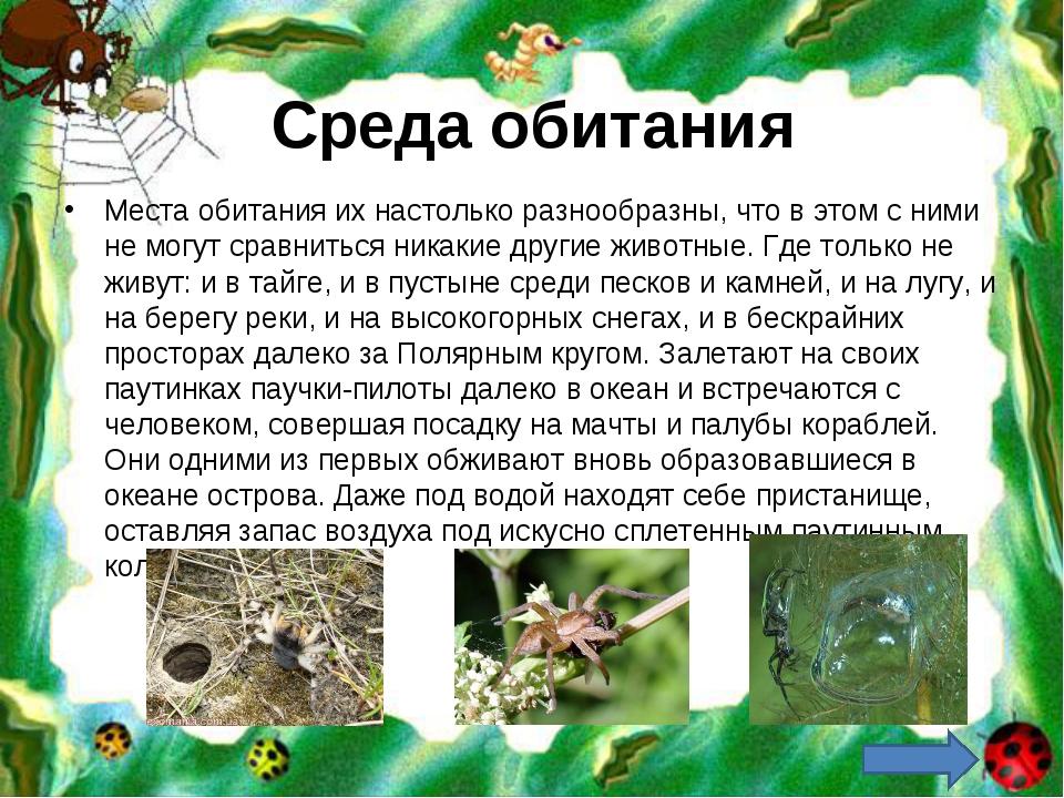 Среда обитания Места обитания их настолько разнообразны, что в этом с ними не...