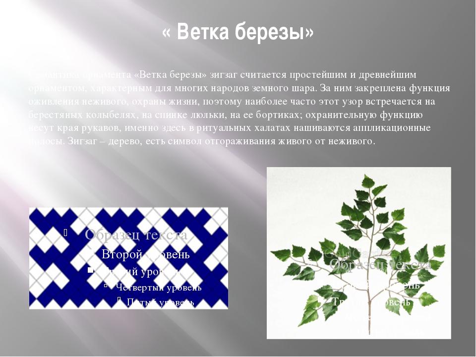 « Ветка березы» Семантика орнамента «Ветка березы» зигзаг считается простейши...